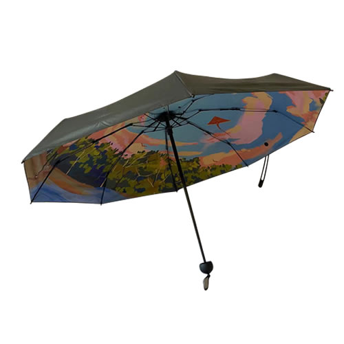 数码印雨伞